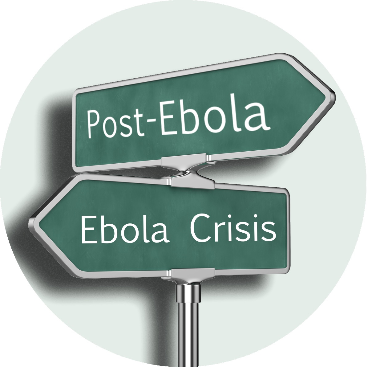 Planning for a post-Ebola West Africa: Part 1: The economy